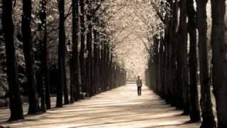 You'll Never Walk Alone - Nina Simone