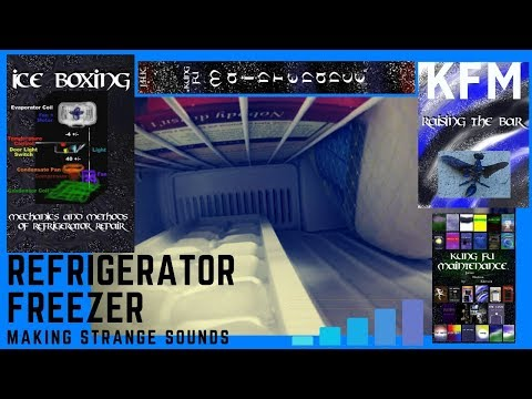 Refrigerator Freezer Making Water Dripping Sizzling Strange Funny Sounds Plus Fridge Noises