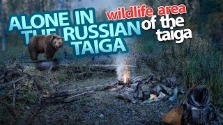Extreme travel, alone in the Russian taiga, 55 km. of wild area