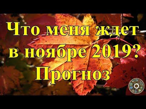 Что меня ждет в ноябре 2019? Прогноз.