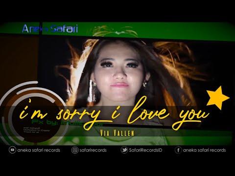 Via Vallen Im Sorry I Love You