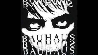 Bauhaus - Monkey (Poison Pen)