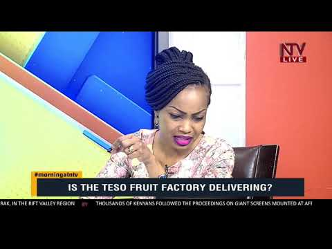 TAKE NOTE: Is the Teso fruit factory delivering?