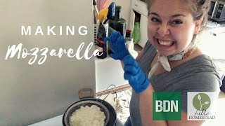 I tried making mozzarella. Here's how it went.