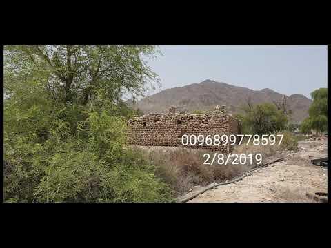 زئبق أحمر مستخرج من الجبل ( 255 ) للعلم 0096899778597
