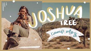TRAVEL VLOG: Joshua Tree   WahlieTV EP734