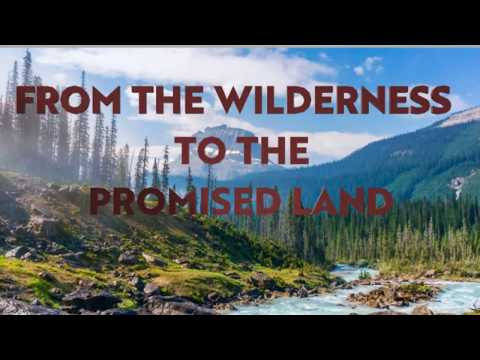 From the Wildnerness to the Promised Land