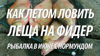 Энциклопедия рыбалки фидером