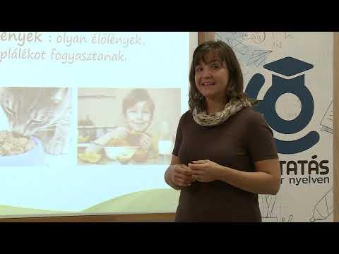 A paraziták elleni hatékony étrend- kiegészítők