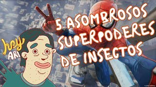 5 asombrosos superpoderes de insectos - Hey Arnoldo