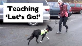 How to stop your dog lunging and barking- Train 'Let's Go!'- shy reactive dogs