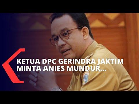 Terkait Cuitan Minta Anies Baswedan Mundur, DPP Gerindra Tegur Ketua DPC Jakarta Timur