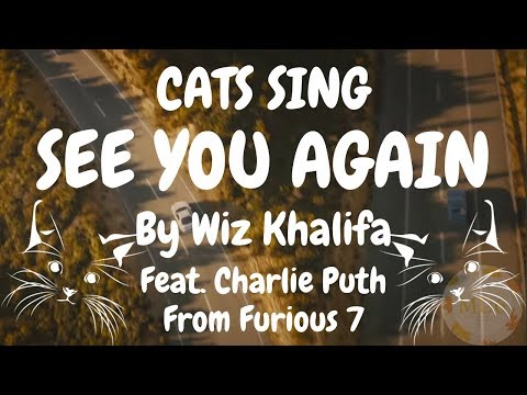 Cats Sing See You Again from Furious 7 by Wiz Khalifa feat. Charlie Puth | Cats Singing Song