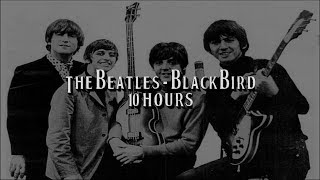 Blackbird by The Beatles for 10 Hours