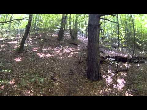 Pusty Hrad downhill mountain biking
