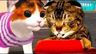СИМУЛЯТОР Маленького КОТЕНКА #3  Крокодил котенок игра про котиков мультик видео для детей Валеришка