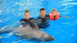 Плавание с дельфинами в Москвариуме Москва
