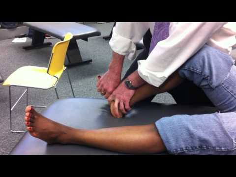 Ortesi per lorto del ginocchio