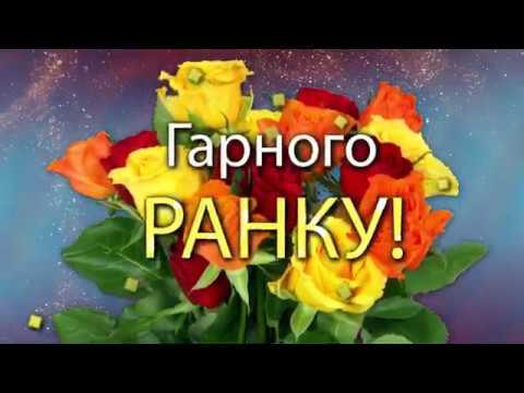 ✅ГАРНОГО РАНКУ! Ці троянди для тебе!✅