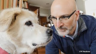 Newswise:Video Embedded calling-all-canines-for-national-dog-aging-project