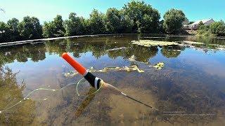 Ловля карася на поплавочную удочку летом