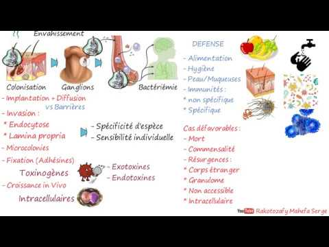 Prevenirea și tratarea paraziților la om