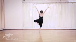 Orientalischer Tanz, Teil 2