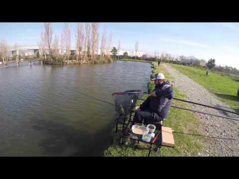 Pesca di Karelia di una bottatrice di video