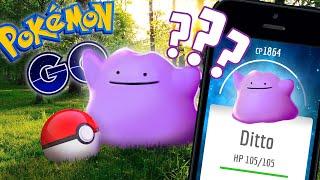 Ditto  - (Pokémon) - POKEMON GO - HOW TO CATCH DITTO? (DITTO EASTER EGG)