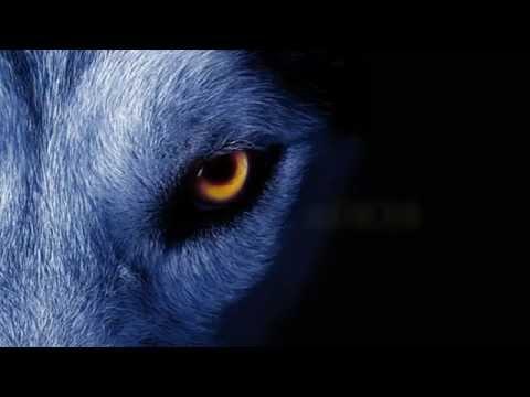 David Guetta ft. Sia - She Wolf Instrumental