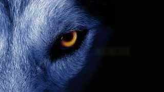 David Guetta ft. Sia - She Wolf Instrumental *