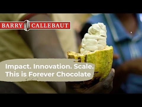 Sustentabilidad en Barry Callebaut