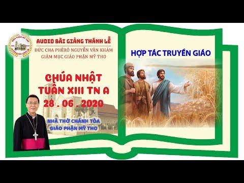 Đức Cha Phêrô suy niệm CN XIII TN A: HỢP TÁC TRUYỀN GIÁO
