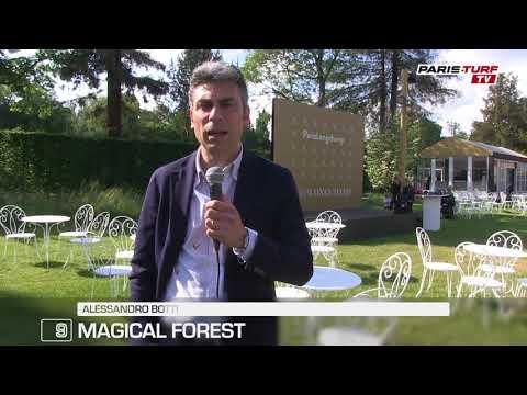 """Quinté dimanche 27/05 : """"Contre les seules femelles, Magical Forest (9) a son mot à dire"""""""