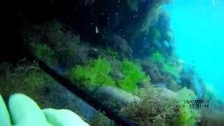 Подводная охота на краба и окуня