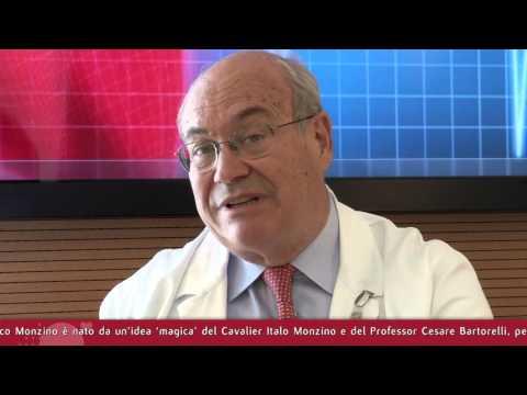 Intervista prof. Cesare Fiorentini - pt.1