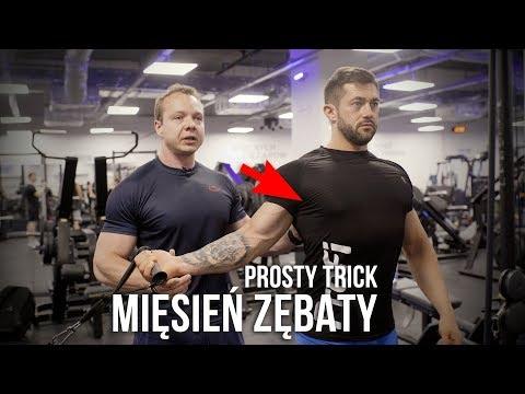 Ćwiczenia wytrzymałościowe, aby wzmocnić mięśnie pleców