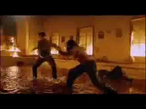 Capoeira Vs Muay Thai