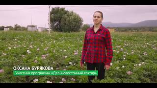 Дальневосточный гектар: история успеха. Крестьянско-фермерское хозяйство Оксаны Буряковой