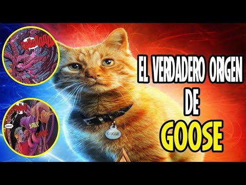 Conoce la verdadera historia de GOOSE la mascota de Captain Marvel (Carol Danvers)
