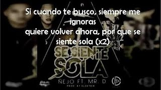 Se Siente Sola (letra) - Ñejo (Video)