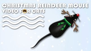CAT GAMES - Christmas Reindeer Mouse! MOUSE VIDEO FOR CATS.