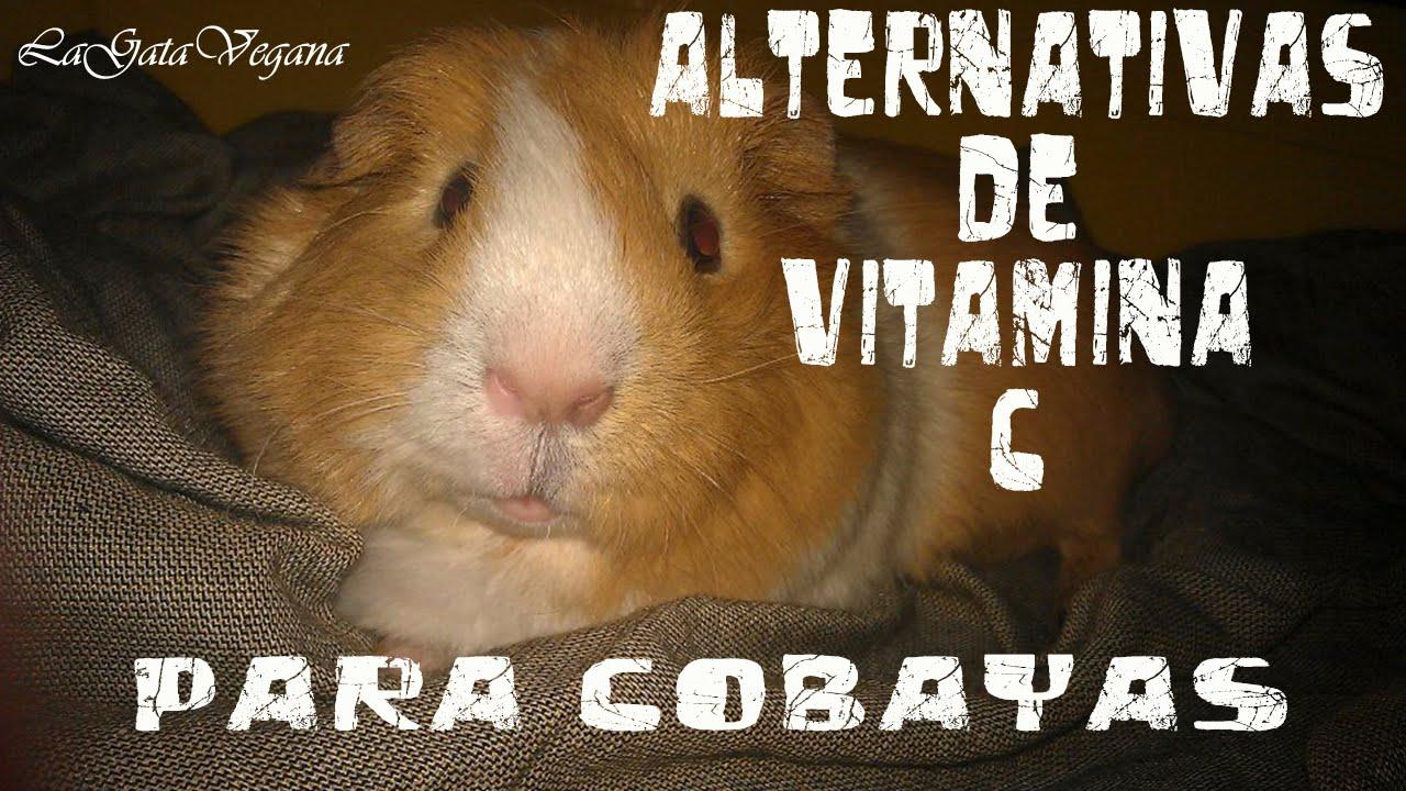 ALTERNATIVAS DE VITAMINA C PARA LAS COBAYAS AL REDOXON GOTAS YA RETIRADO DEL MERCADO