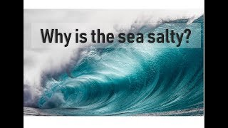 Learn #withme why it is important that the sea is salty | Prof TRACEY ROGERS