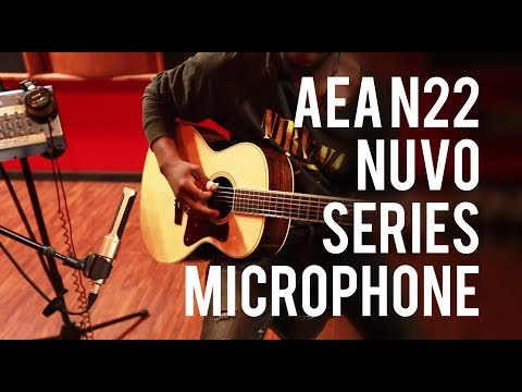 AEA N22 Nuvo Series Microphone – Into The Lair #101