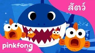 ลูกฉลาม | เพลงสัตว์ | พิ้งฟอง(Pinkfong) เพลงและนิทาน