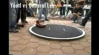 preview picture of video 'Yaotl - XII Concurso de Minirobotica - por la Universidad Panamericana: Bonaterra - Sumobot'