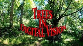DJI FPV Digital... I can finally see!