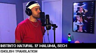 Instinto Natural By Maluma, Sech (ENGLISH TRANSLATION)