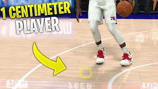 I Made A 1 Centimeter Player In NBA 2K20!